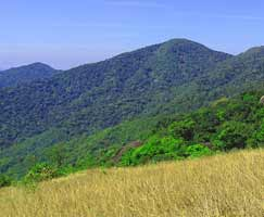 Package Tour To Kannur